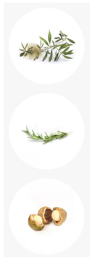 Herb Oil6.jpg