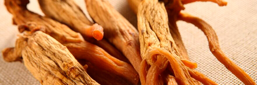 dry-ginseng-root-12.jpg