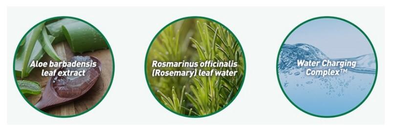 AROMATICA 95% Natural Aloe Aqua Cream2.jpg