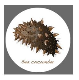 BeauuGreen Sea Cucumber&Black Hydrogel Eye Patch5.jpg
