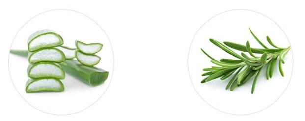 AROMATICA 95% Organic Aloe Vera Gel1.jpg