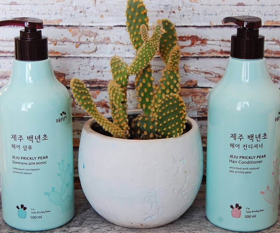 Шампунь с экстрактом колючей груши  Flor de Man Jeju Prickly Pear Hair Shampoo